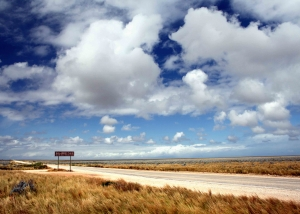 The Nullarbor (IMG_1444)